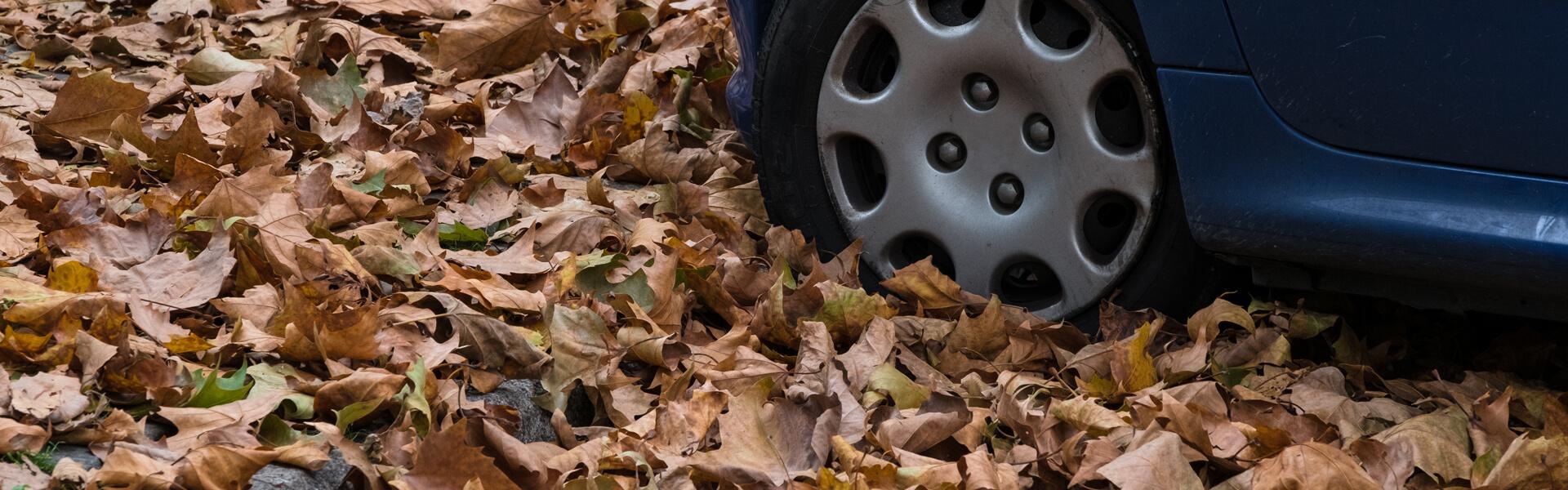 Ein Auto fährt durch hohen Herbstlaub.